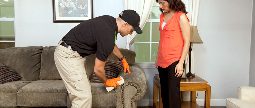 Cullman, AL carpet upholstery cleaning